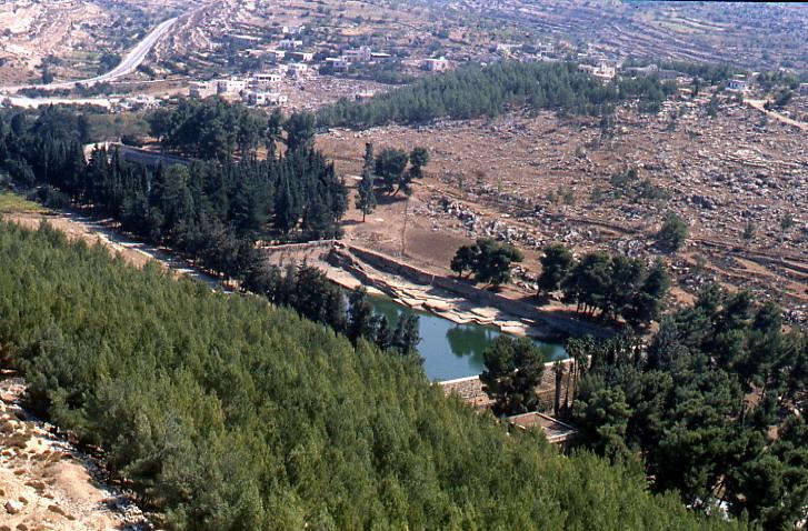 Наполненные бассейны Шломо - 1981 год
