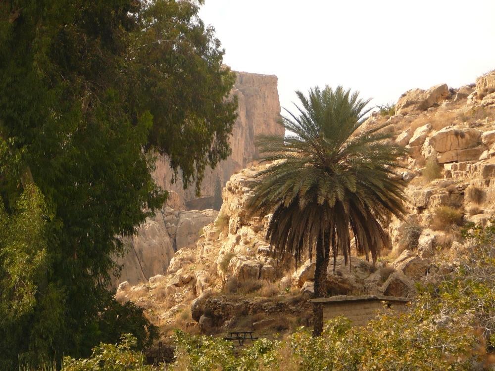 Ущелье Прат (Кельт) – оазисы Иудейской пустыни